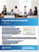 Organizational Competency Analysis
