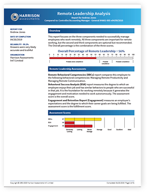 Remote Work Analysis - Leadership Sample Report