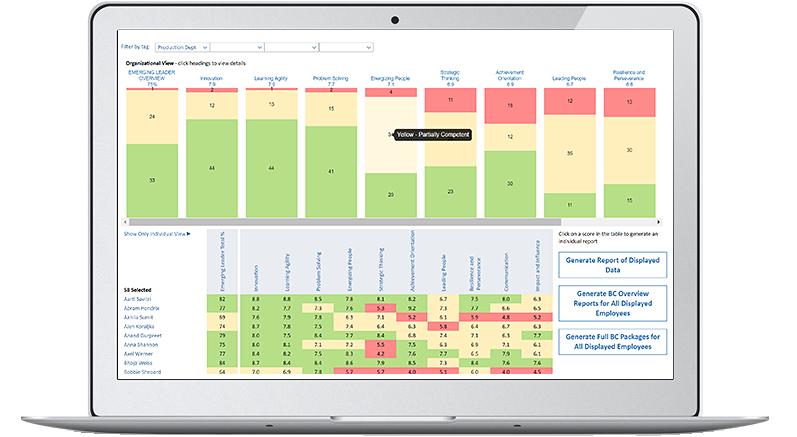 organizational analytics - behavioral competency